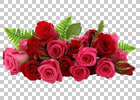 背景家庭日,花卉,花束,洋红色,插花,切花,蔷薇,花卉设计,花瓣,玫图片