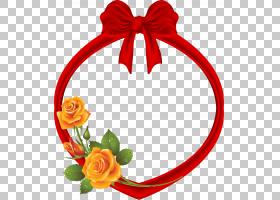 花卉剪贴画背景,切花,花瓣,花园玫瑰,花,装饰,绘图,红色,装饰,相