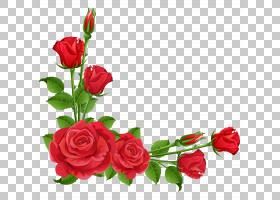 红色花边,花卉,花束,情人节,插花,切花,人造花,玫瑰秩序,玫瑰家族