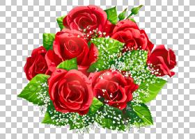 背景家庭日,粉红色家庭,一年生植物,插花,情人节,玫瑰秩序,玫瑰家