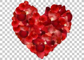 花卉剪贴画背景,红色,玫瑰,花束,切花,颜色,花园玫瑰,花,心,花瓣,