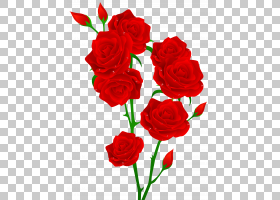 背景家庭日,花卉,情人节,插花,切花,floribunda,人造花,花卉设计,