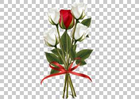 背景家庭日,芽,花卉,植物茎,插花,花卉设计,蔷薇,玫瑰秩序,玫瑰家