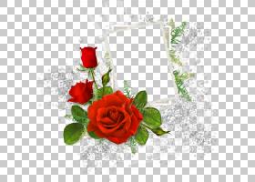 花卉婚礼邀请函背景,红色,花卉,花束,插花,切花,植物群,花卉设计,