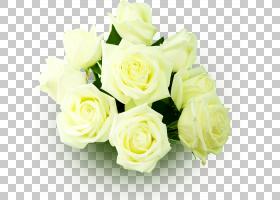 花卉婚礼邀请函背景,花卉,插花,切花,人造花,花卉设计,玫瑰秩序,