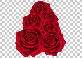 花卉背景,花卉,花束,洋红色,插花,玫瑰秩序,玫瑰家族,花,植物,花图片