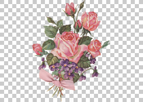 背景家庭日,插花,floribunda,蔷薇,花瓣,玫瑰秩序,玫瑰家族,花园
