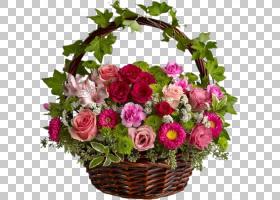 背景家庭日,粉红色家庭,插花,礼品篮,蔷薇,玫瑰秩序,花盆,玫瑰家