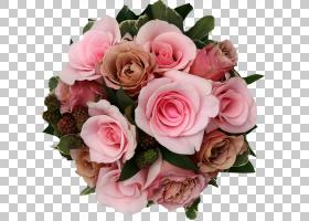 粉红色花卡通,插花,蔷薇,花瓣,玫瑰秩序,玫瑰家族,人造花,植物,粉