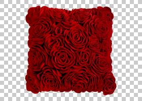 花卉剪贴画背景,红色,花卉,插花,切花,矩形,花卉设计,玫瑰秩序,玫