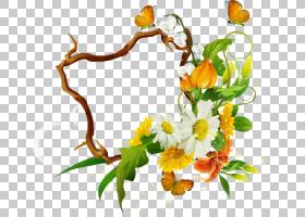 感恩节背景设计,金盏花,植物茎,花瓣,叶,花卉,插花,橙色,植物,植