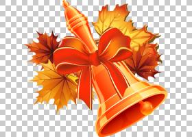 教师节背景,花,橙色,学校假期,学年,幼儿园,生日,九月,2015年,艺