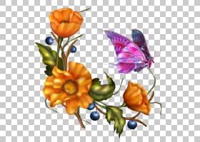 花束画,花卉设计,花束,橙色,切花,飞蛾与蝴蝶,昆虫,插花,花卉,花图片