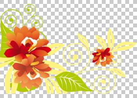 花束画,草本植物,花卉,花束,橙色,植物群,插花,花卉设计,黄色,切
