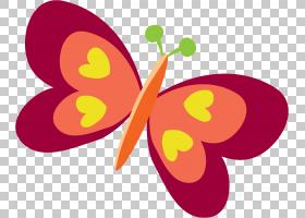 橙花,洋红色,橙色,飞蛾与蝴蝶,植物群,昆虫,黄色,传粉者,花瓣,水图片
