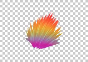 橙花,洋红色,花,羽毛,花瓣,橙色,黄色,特写镜头,图片