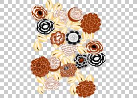 花线艺术,圆,线路,鹦鹉螺,橙色,短信,橙色SA,装饰艺术,花,食物,鹦