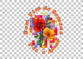 花线艺术,花卉,插花,橙色,线路,花瓣,切花,花,植物群,花卉设计,