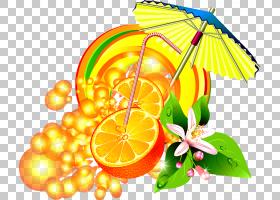 柠檬花,黄色,食物,装饰,植物,柑橘,叶,水果,Auglis,花,橙色,葡萄