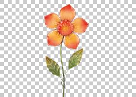 花卉剪贴画背景,切花,植物,人造花,蓝色,植物茎,玻璃,颜色,黄色,