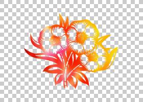 橙花,花瓣,花,植物,橙色,植物,叶,