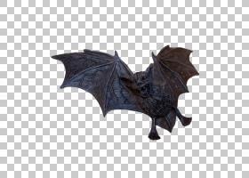 万圣节卡通背景,机翼,Web浏览器,万圣节前夕,蝙蝠飞行,吸血鬼,吸