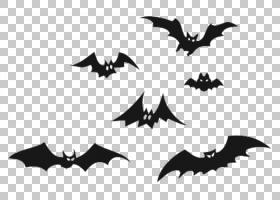 蝙蝠卡通,对称性,剪影,树,机翼,黑白相间,叶子,蝙蝠,文件扩展名,