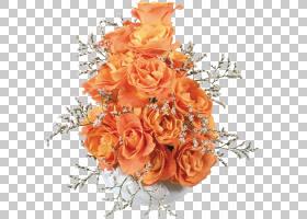 粉红色花卉背景,花卉,插花,花卉设计,玫瑰秩序,花瓣,玫瑰家族,花图片