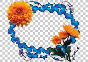 花卉剪贴画背景,彭妮・乔丹,书,切花,花,花卉设计,花瓣,精装,婚姻图片