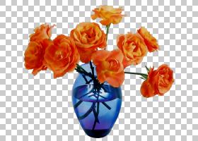 花卉剪贴画背景,玫瑰秩序,伪影,玫瑰家族,花束,植物,橙色,相框,花图片