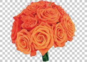 花卉剪贴画背景,花卉,切花,floribunda,插花,花卉设计,玫瑰秩序,图片
