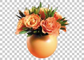 花卉剪贴画背景,花卉,橙色,水果,插花,花卉设计,玫瑰秩序,玫瑰家图片