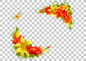 花卉剪贴画背景,花卉设计,橙色,切花,插花,花卉,花瓣,植物群,植物图片