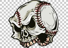 骷髅标志,骨头,线路,运动器材,头盔,徽标,头骨,头部,贴花,球,输出
