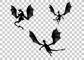 蝙蝠卡通,黑白相间,剪影,蝙蝠,艺术图像文件格式,龙,
