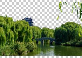 旅行自然背景,植被,银行,草,航道,池塘,水道,景观,水资源,水,巴尤