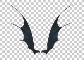 鹿角,喇叭,蝙蝠,黑白相间,邪恶,龙,石嘴兽,魔鬼,恶魔,绘图,机翼,
