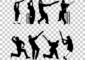 黑白相间,线路,运动器材,关节,剪影,板球运动员,美国青年板球协会