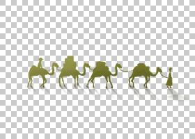 草背景,骆驼状哺乳动物,文本,草,动物,贴纸,丝绸,丝绸之路,马,海