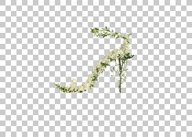绿草背景,草,线路,分支机构,绿色,树,叶子,植物区系,植物,米歇尔