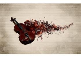 音乐,艺术的,小提琴,壁纸,