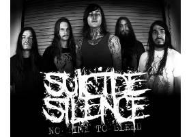 音乐,沉默,带,(音乐),沉重的,金属,金属,壁纸,(1)