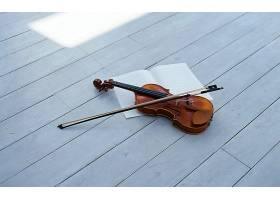 音乐,小提琴,壁纸,(10)