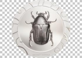金币,餐具,大力神甲虫,昆虫,圣甲虫,银币,正在收集,金枪鱼,大力神