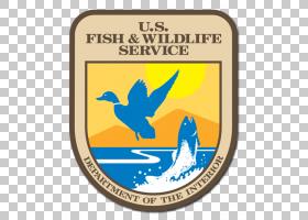 鱼卡通,符号,会徽,标签,徽标,生物多样性,生态系统,野生动物,动物图片