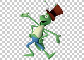 """活页书本,昆虫,树蛙,青蛙,电影""""蜜蜂玛雅"""",海龙属(Caelifera),"""