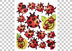 橙色背景,昆虫,桔黄色的,瓢虫,杜斯塔瓦,厘米,动物,三维空间,墙贴
