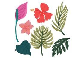 花卉和叶子