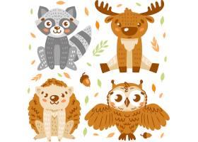 卡通手绘森林动物猫头鹰狐狸角色设计