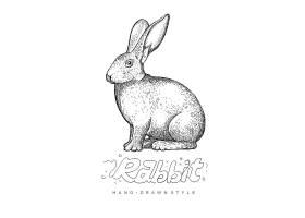 兔子形象手绘单色线稿插画设计